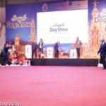 Yunus gewinnt die Terriergruppe
